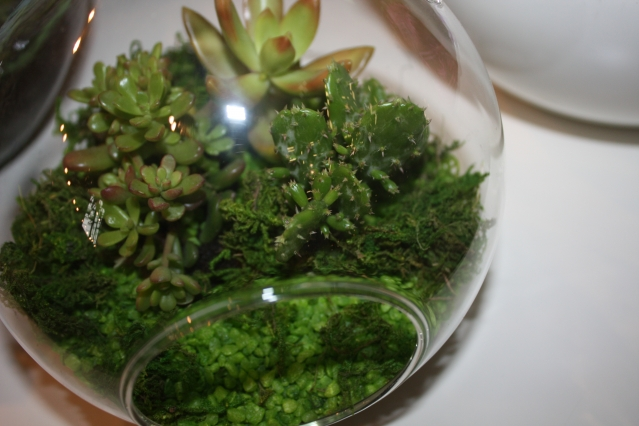 Zahrada v misce10